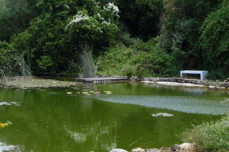 Botanical gardens of Argostoli