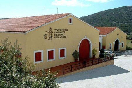 Robola Wine Cooperative – Omala Valley